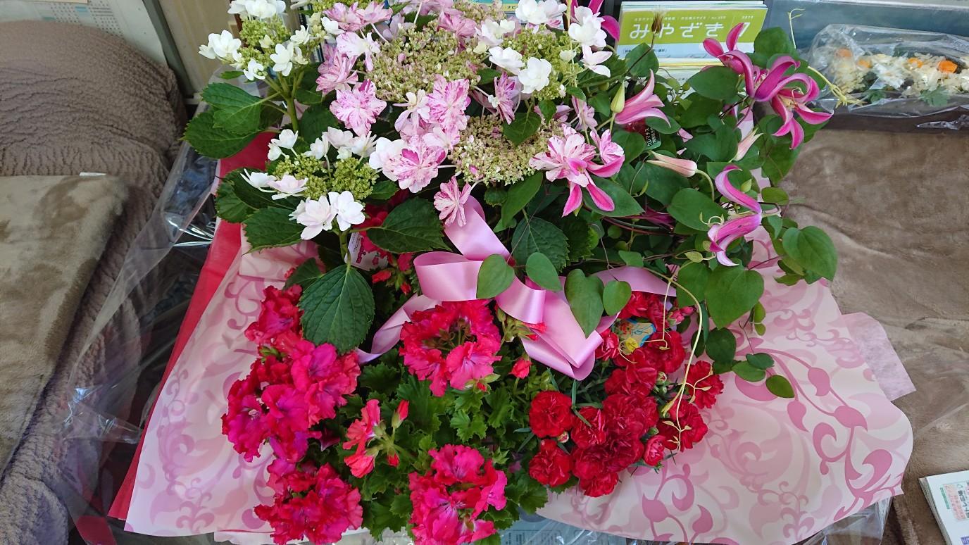 母の日の花が綺麗です!!